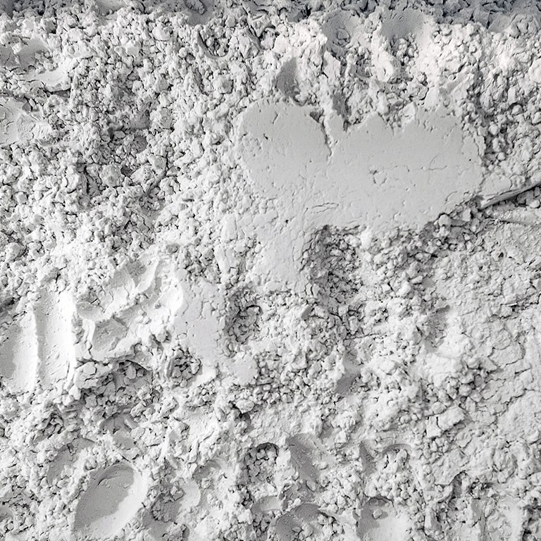 Diatomaceous-Earth